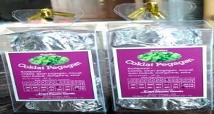 produk-coklat-pegagan-organik-bnn